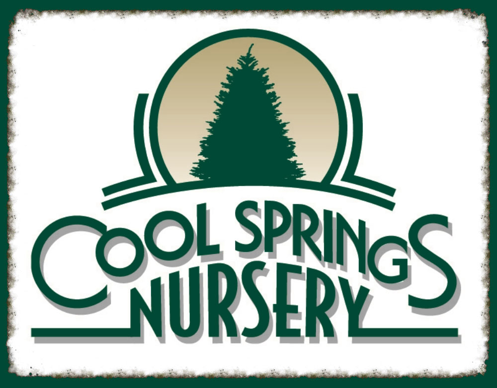 Cool Springs Nursery