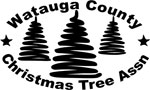 watauga_christmas_tree_grow